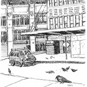 Corner with Pigeon drawing by Mark Lerer