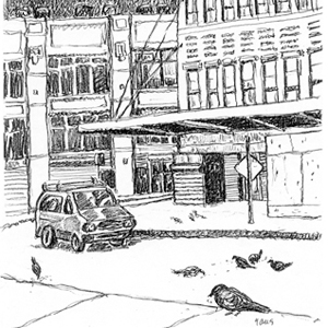 Corner with Pigeon, drawing by Mark Lerer